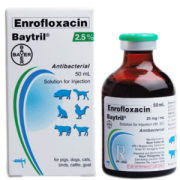 25_baytril-injectable-soln-300x300